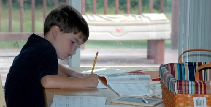 homeschool-working