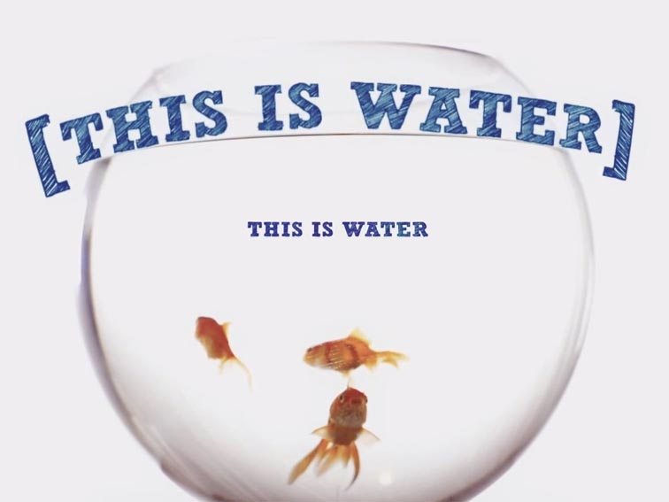 This Is Water: David Foster Wallace Explains How We All ...