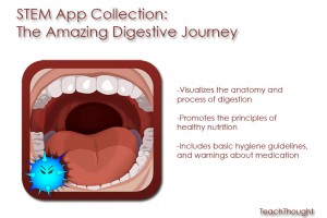 stem-app-collection-the-amazing-digestive-journey