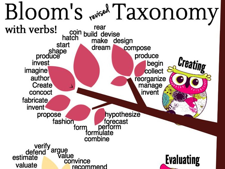 blooms-revised-taxonomy-tree-fi