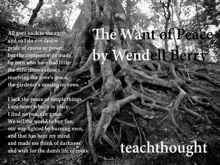 wendell-berry-teachthought-stevegarry