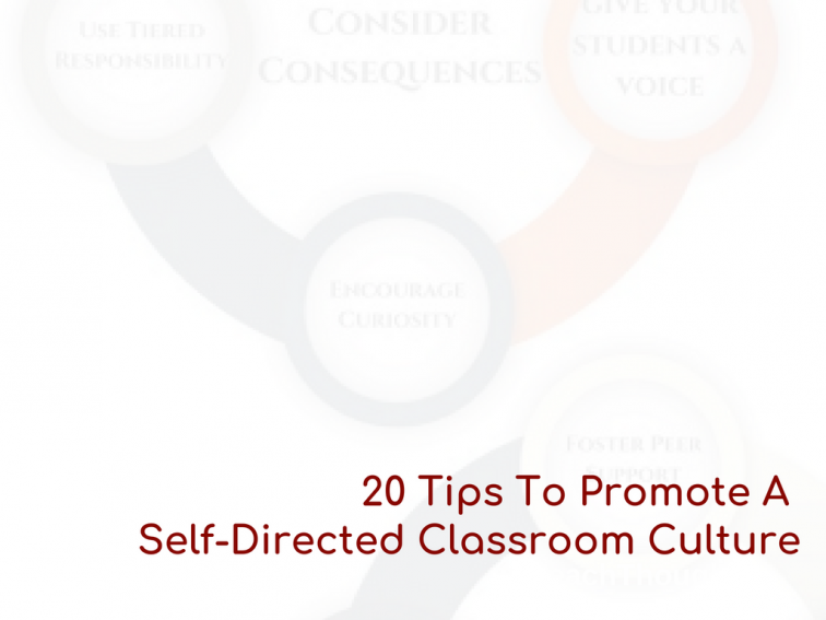 20 Tips To Promote A Self-Directed Classroom Culture