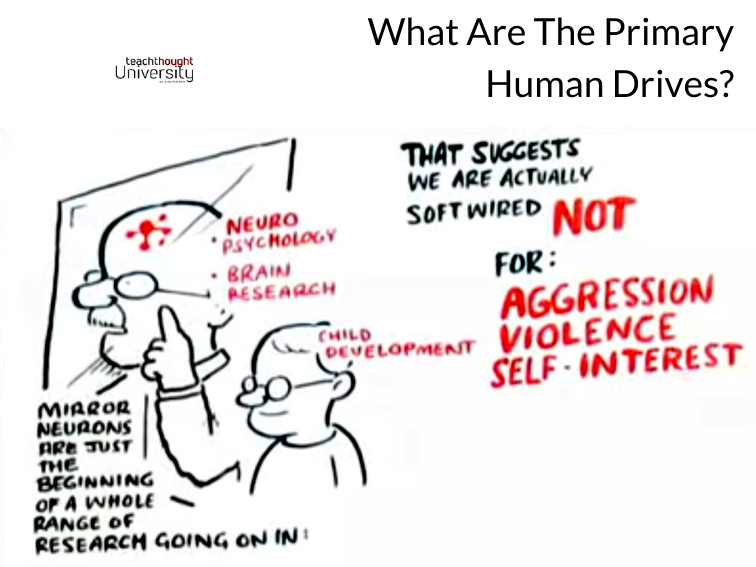 What Are The Primary Human Drives?
